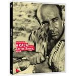 DVD a Caça