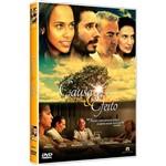 DVD - Causa e Efeito