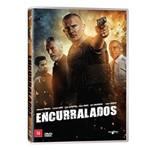 Dvd - Encurralados