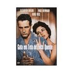 DVD Gata em Teto de Zinco Quente