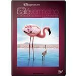 DVD Grande Balé Vermelho - o Mistério dos Flamingos