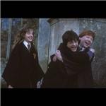 DVD Harry Potter e a Câmara Secreta: Ano Dois - Edição Widescreen
