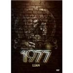 DVD Luan Santana - 1977