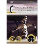 DVD Penguin Café Orchestra (Importado)