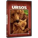 DVD - Ursos