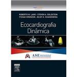 Ecocardiografia Dinâmica