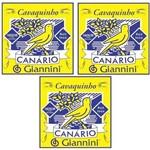 3 Encordoamento Cavaquinho Canario Giannini Gescb - Média