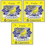 3 Encordoamentos Viola Canario Giannini Gesvb Media