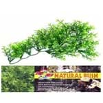 Zoomed Planta Artificial Australian Maple Bu-34