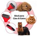 Escova para Cachorro Shih Tzu 23 Dentes Rasqueadeira Profissional Pet Shop
