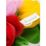 Esponja de Nylon Flor - Orgânica