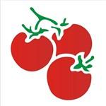 Estêncil para Pintura Simples 10x10 Tomates OPA788 - Opa