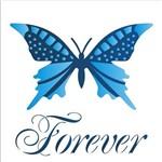 Estêncil para Pintura Simples 14x14 Borboleta Forever OPA1371 - Opa