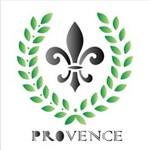 Estêncil para Pintura Simples 14x14 Provence Opa1142 - Opa