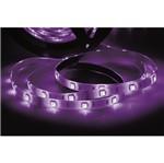 Fita LED 5W Violeta 5 Metros com 60 Leds 12V Taschibra