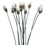 Flores Artesanais Mini Botões Toke e Crie Flor175 Branco Coleção Delicada
