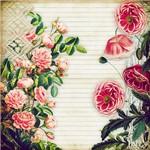 Folha para Scrapbook Estampado Litocart 30,5 X 30,5 Cm - Modelo Lsce-20 - Página Flor Rosa