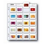 Folha Plástica Porta Negativos e Slides 35mm - Print File 2x2 20b