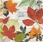 Guardanapo Toke e Crie Outono Manuscrito - 5 Unid