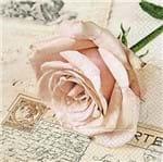 Guardanapo Toke e Crie Rosa Romântica - 5 Unid