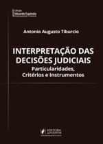Interpretação das Decisões Judiciais: Particularidades, Critérios e Instrumentos (2018)