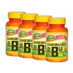 Kit 4 Vitamina B12 - Cianocobalamina 60 Caps Cada - 240 Capsulas