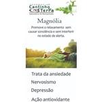 Kit Capsula Magnolia 250mg - 3 Potes com 60caps Cada