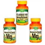 Kit Cloreto de Magnésio Pa e Dimalato e Quelato Unilife