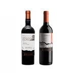 Kit de Vinhos Chilenos Ventisquero Carménère 750ml