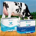Kit Tratamento de Mastite Ourofino - 24 Ciprolac Vaca Lactação + 24 Sellat
