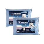 Kit 2 Travesseiros Supernasa Frostygel para Fronhas 50x70 Cm Fibrasca