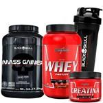 Kit Whey Protein 900g + Hipercalórico Importado + Creatina