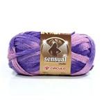 Lã Sensual Crochê 100g - Círculo