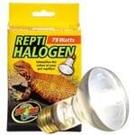 Lâmpada Repti Halogen Heat - Zoomed HB-75