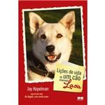 Lições de Vida de um Cão Chamado Lava