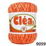 Linha Cléa 5 Mescla 9059 Abóbora