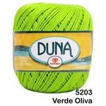 Linha Duna Circulo 100g - Cor: 5203 Greenery