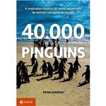Livro - 40. 000 Pinguins