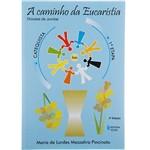 Livro - a Caminho da Eucaristia: Livro do Catequista