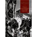 Livro - a Função Social da Guerra na Sociedade Tupinambá