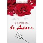 Livro - a Grandeza do Amor