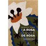 Livro - a Rosa o que é de Rosa: Literatura e Filosofia em Guimarães Rosa