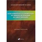 Livro - Ações Afirmativas e a Concretização do Princípio da Igualdade no Direito Brasileiro
