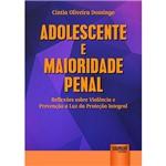 Livro - Adolescente e Maioridade Penal