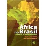 Livro - África no Brasil