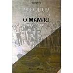 Livro - Arte/Cultura em Trânsito: o MAM/RJ na Década de 1970