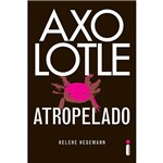 Livro - Axolotle Atropelado
