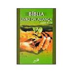 Livro - Bíblia: Livro da Aliança: Êxodo 19 - 24