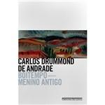 Livro - Boitempo - Menino Antigo