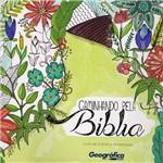 Livro - Caminhando Pela Bíblia